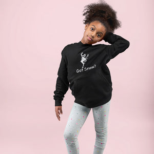 Got Snow? Cool Snowboarder! Novelty Youth Hoodies (No-Zip/Pullover)