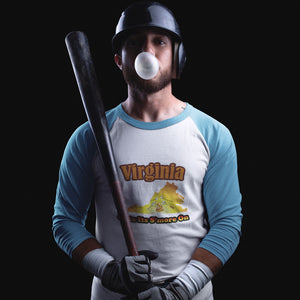 Virginia Gets Its S'more On! Novelty Baseball Tee (3/4 sleeves) - CampWildRide.com