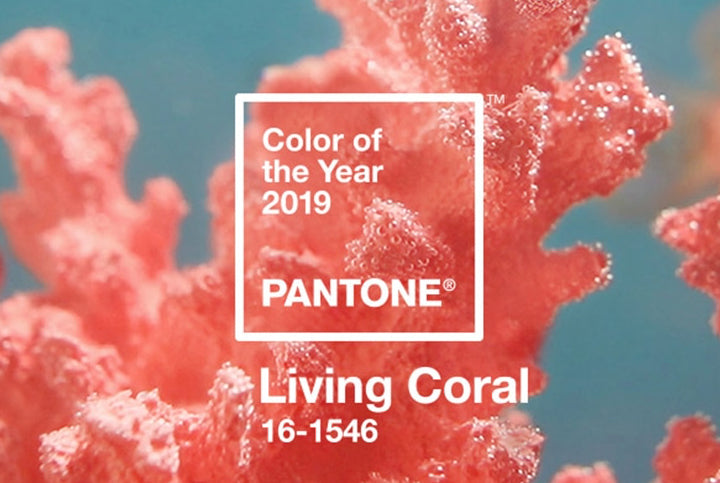 We're loving this years Pantone colour!