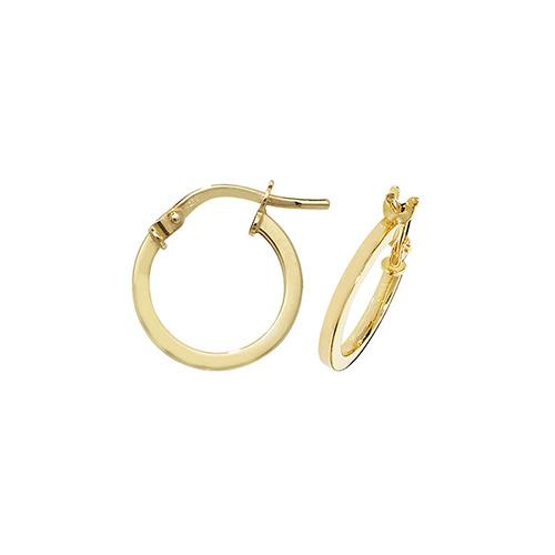 9ct Gold Ladies Hoop Earrings Jewellery Treasure House Limited