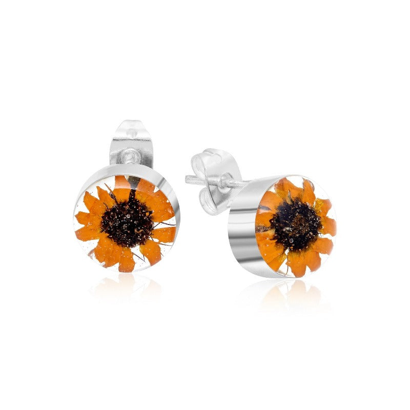 Real sunflower round silver stud earrings