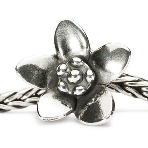 Trollbeads silver charm bead of a silver flower with  open petals