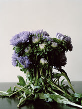 Ingrid Eggen Restricted 'Flora #2' Analogt foto, analog c-print (2014) 50x60 cm