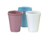 Supermax Canada Disposable Plastic Dental Cups - Avida Healthwear Inc.