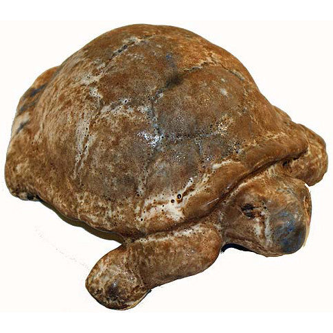 http://WWW.THEMISSISSIPPIGIFTCOMPANY.COM/peters-pottery-nutmeg-turtle.aspx