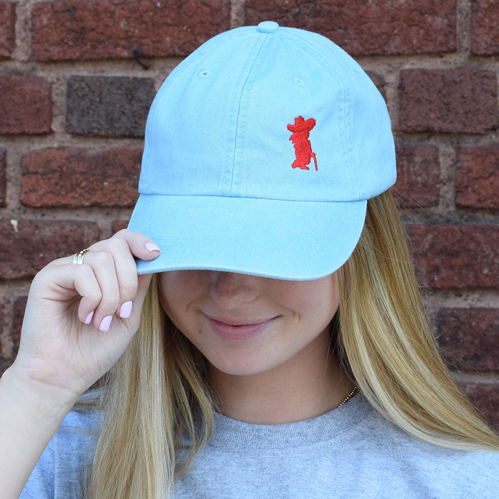 Powder Blue Rebel Silhouette Hat - TheMississippiGiftCompany.com