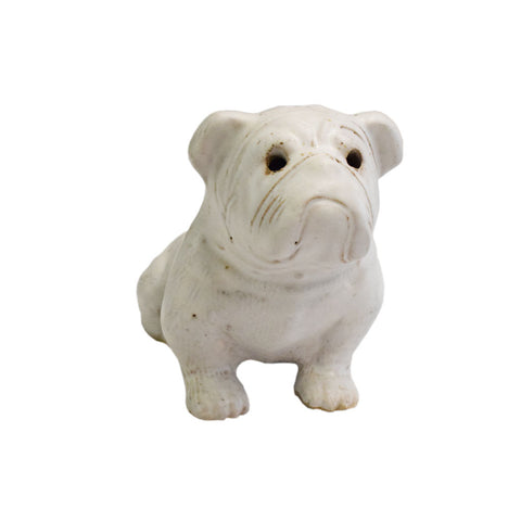 Small Bulldog White