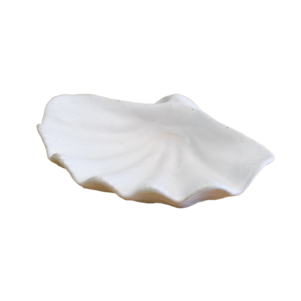 Small Shell White