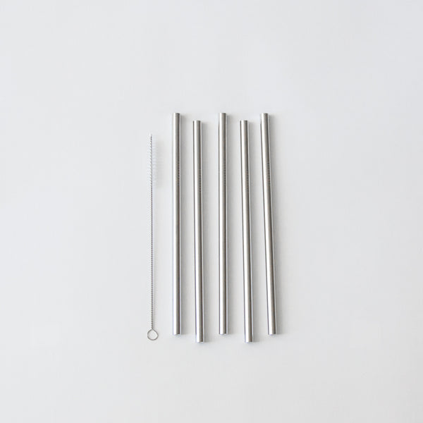 Stainless Steel Straws, Set of 5