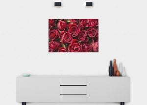 Red Roses Wall Mural - Blue Lake Decor