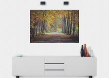 Load image into Gallery viewer, Autumn Forest Path Wall Mural - Blue Lake Decor