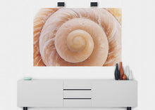 Load image into Gallery viewer, Seashell Wall Mural - Blue Lake Decor