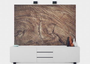 Tree Stump Wall Mural - Blue Lake Decor