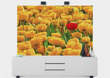 Load image into Gallery viewer, Bright Tulips Wall Mural - Blue Lake Decor