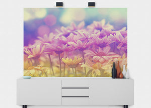 Rainbow Daisies Wall Mural - Blue Lake Decor