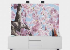 Cherry Blossom Flower Wall Mural - Blue Lake Decor