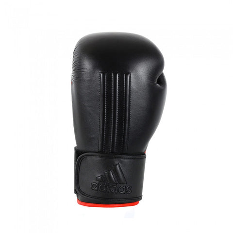 Energy 300 Boxing Glove