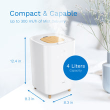Load image into Gallery viewer, 4L Mini Humidifier for Bedroom