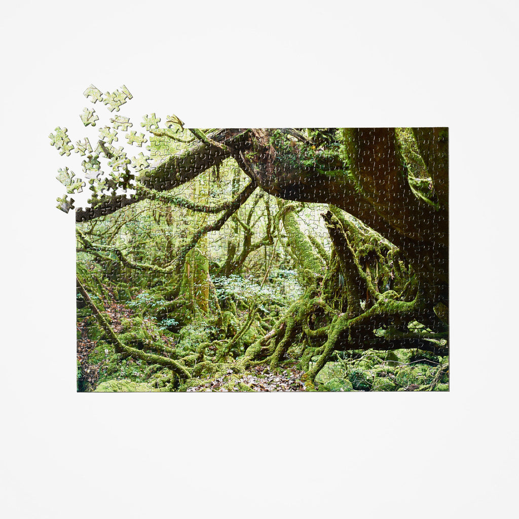Japanese Forest Travel Puzzle