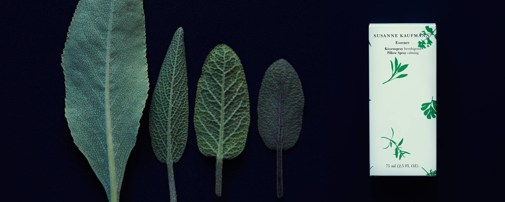 Uncompromisingly Natural: Botanical Beauty by Susanne Kaufmann