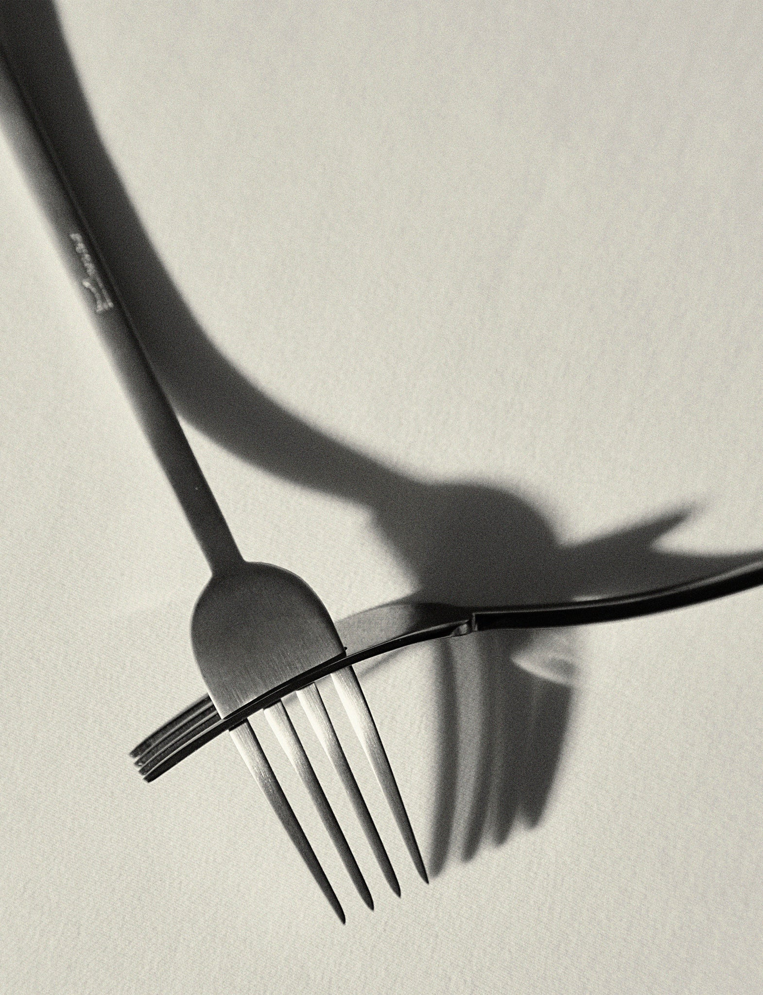 Merpa Flatware at The Line