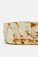 Petrified Wood Bowl