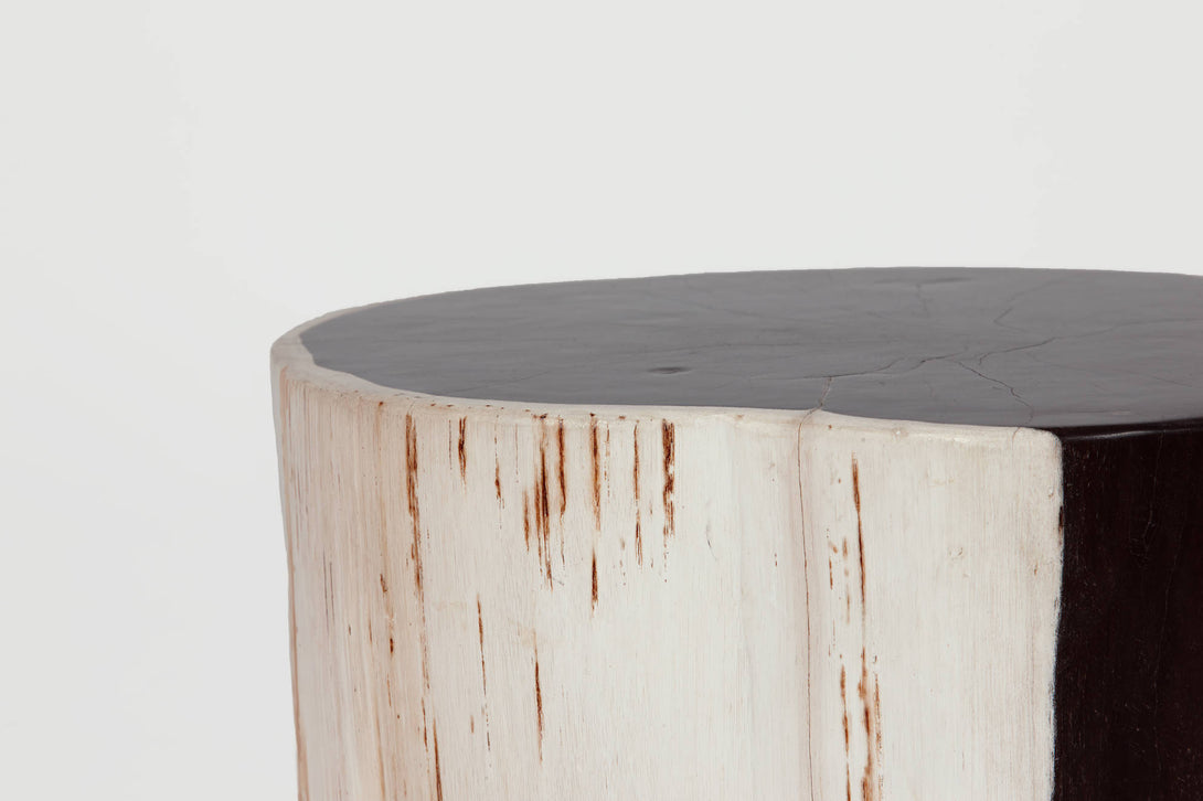 ... Pair Of Petrified Wood Side Tables ...