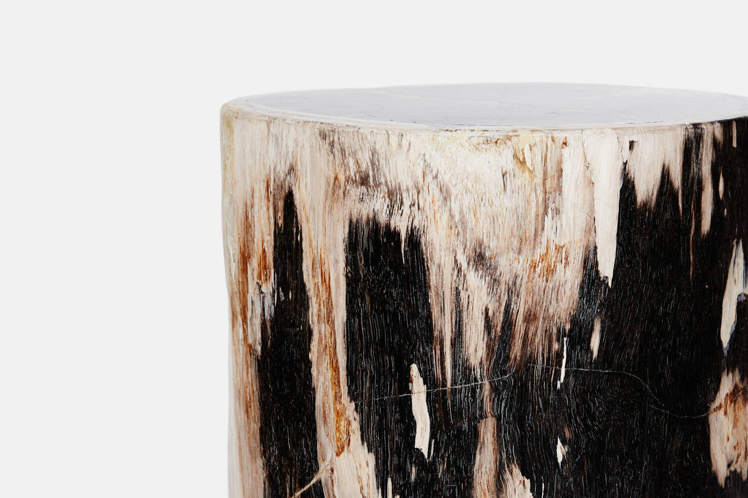 ... Petrified Wood Stool/Side Table 12 Diameter X 20 H ...