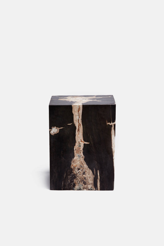 Petrified Wood Block Stool - Marbled