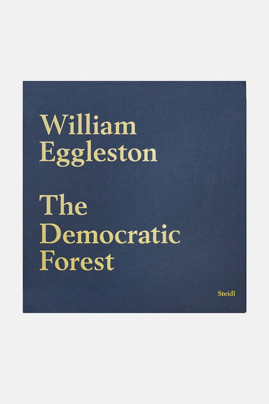 william eggleston essay Specifics price is net to all promotional discounts do not apply first edition, first printing limited slipcased edition of 150 copies, signed by eggleston.