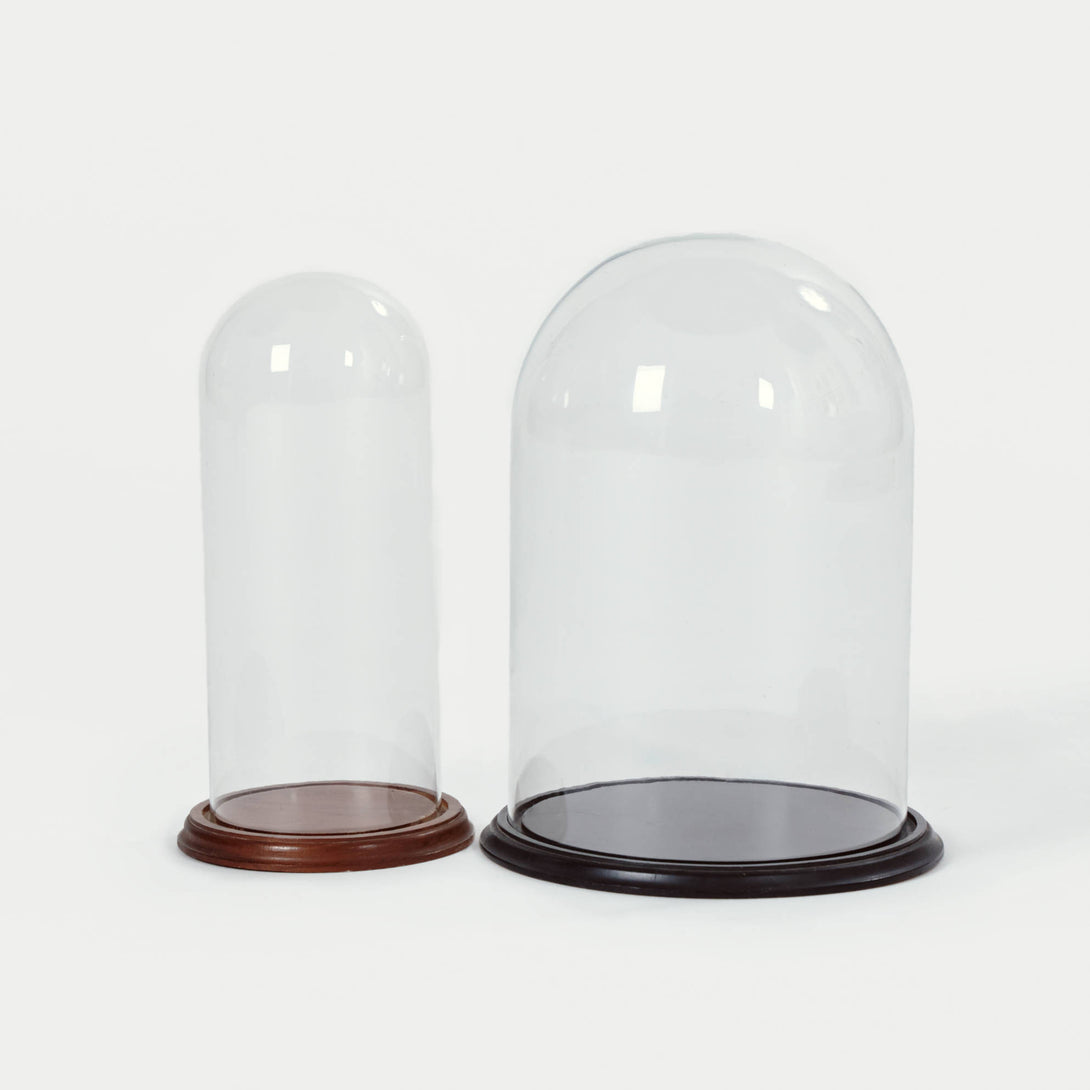 Pair of Glass Cloches with Wooden Bases