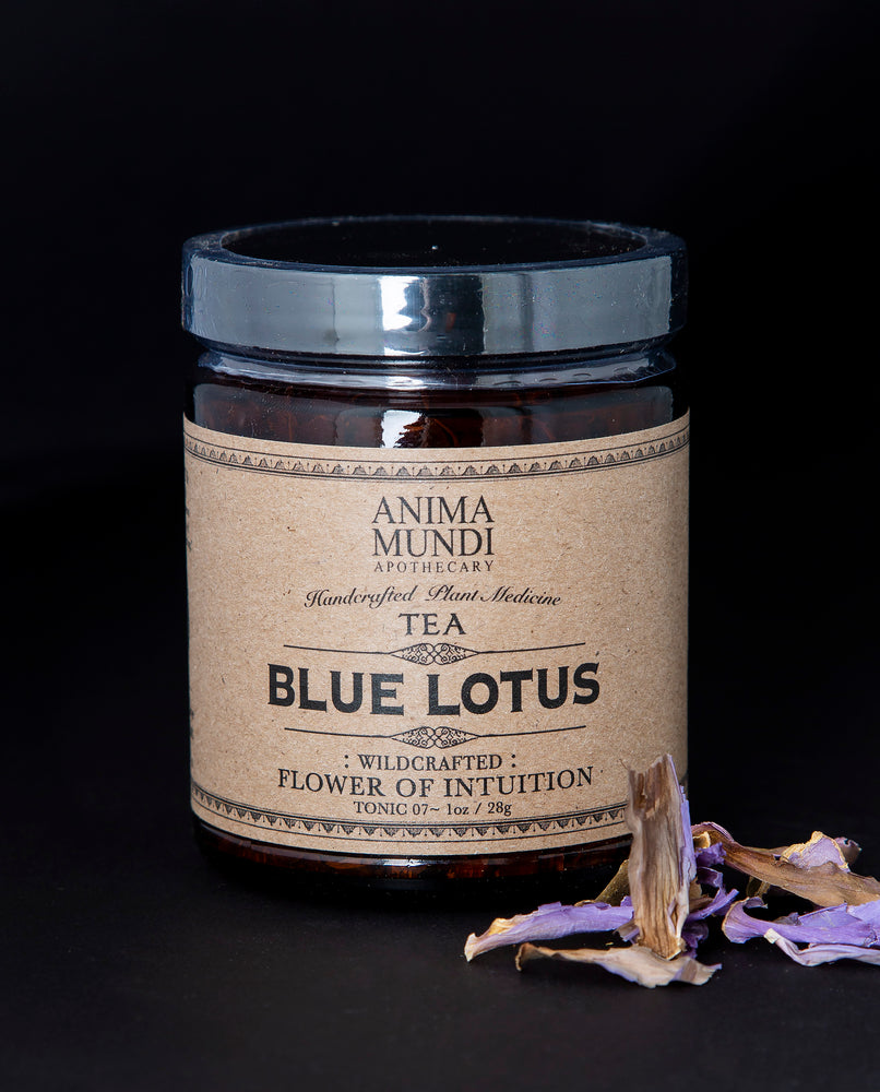 Blue Lotus Flower - Anima Mundi Apothecary