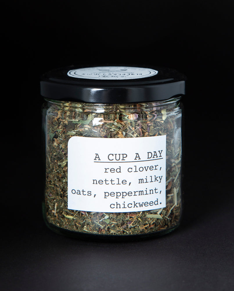 A Cup A Day Herbal Infusion - Blueberryjams