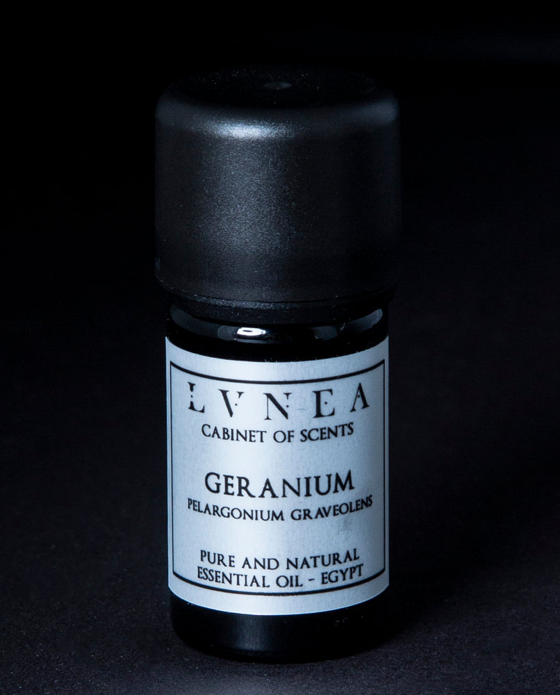 Geranium - Pure Essential Oil