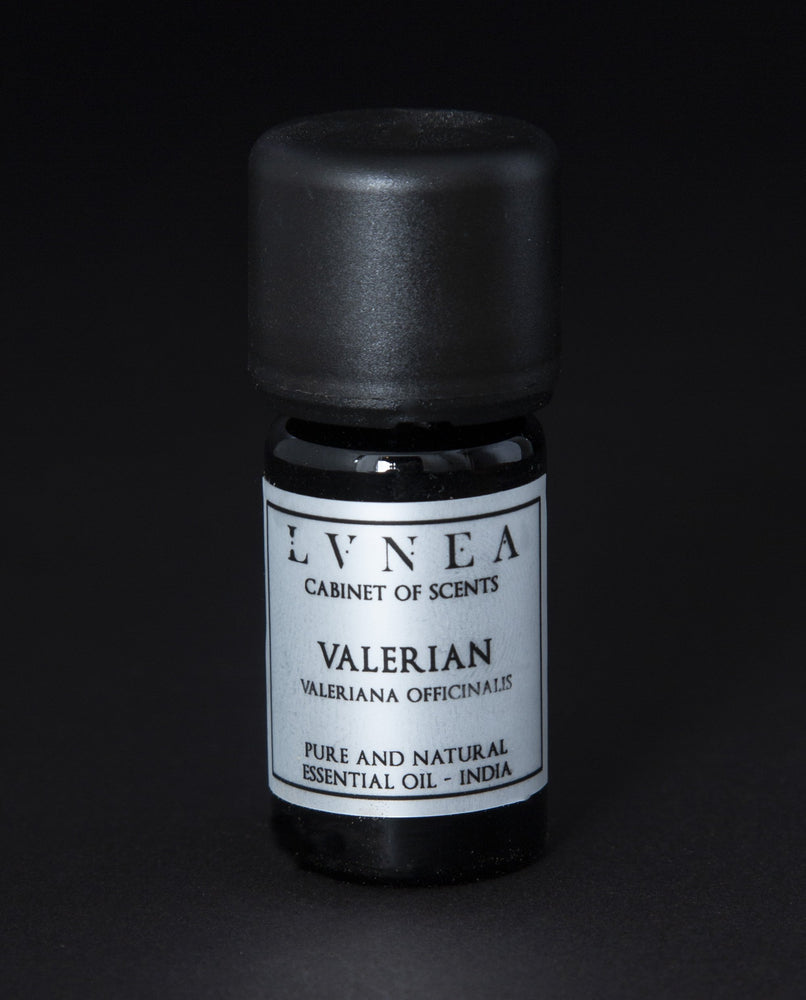 Valerian - Pure Essential Oil