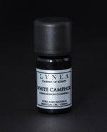 White Camphor - Pure Essential Oil