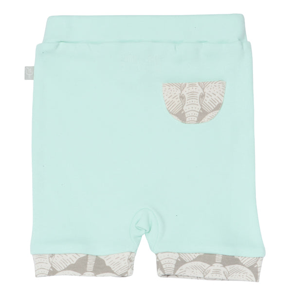 Finn and Emma Organic Cotton Shorts - Elephants Gossamer Green