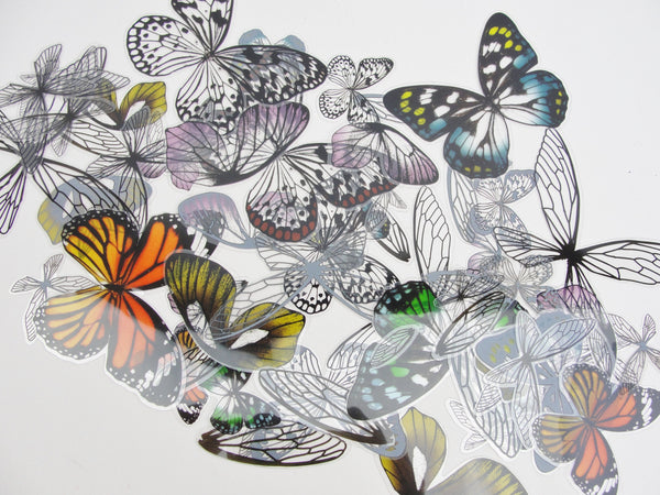 Tim Holtz transparent wings Idea-ology TH93785 - Mixed Media Art Supplies - Craft Supply House