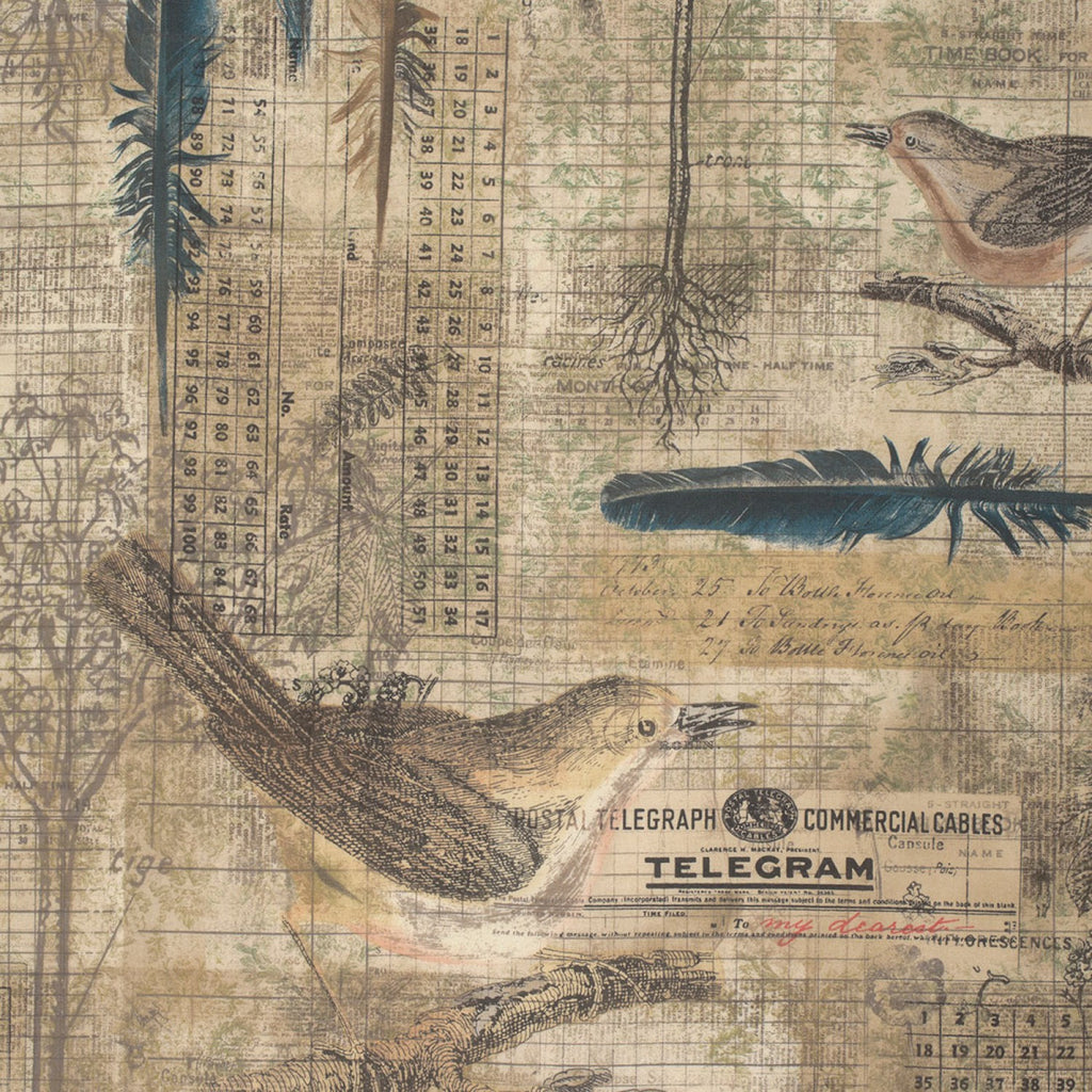 Tim Holtz Aviary fabric yardage - Fabric - Craft Supply House