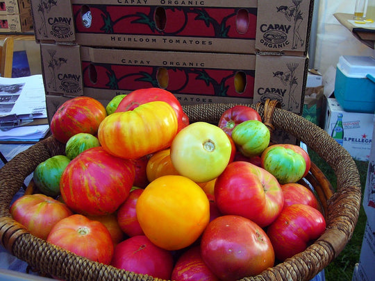 Bushel of Heirloom Tomatoes