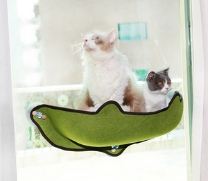Cat Window Pod Lounger