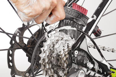Bike Cleaning Tips 101