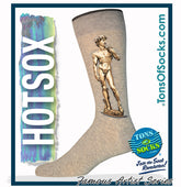 Men's Michelangelo's David Socks (Grey)