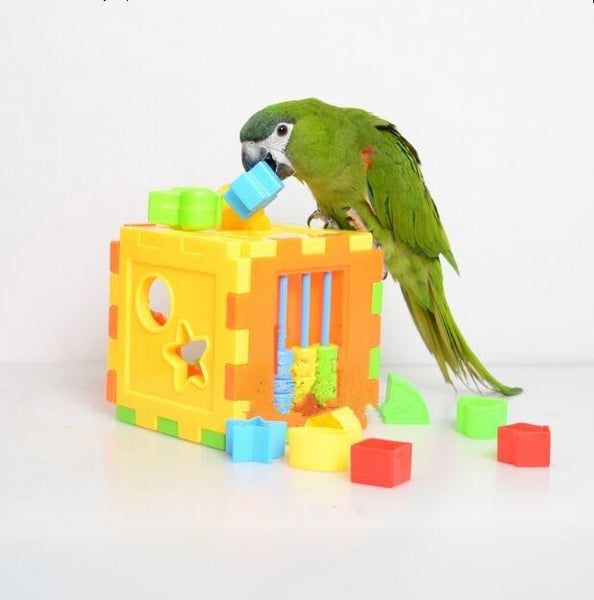 Birds Puzzle Toy - Grab, Shop & Go