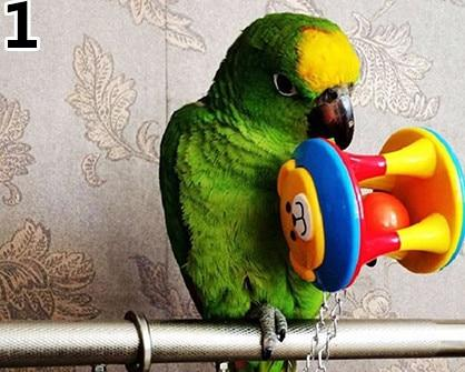 Cute Pet Bird Plastic Chew Ball Chain Cage Toy for Parrot Cockatiel Parakeet - Grab, Shop & Go