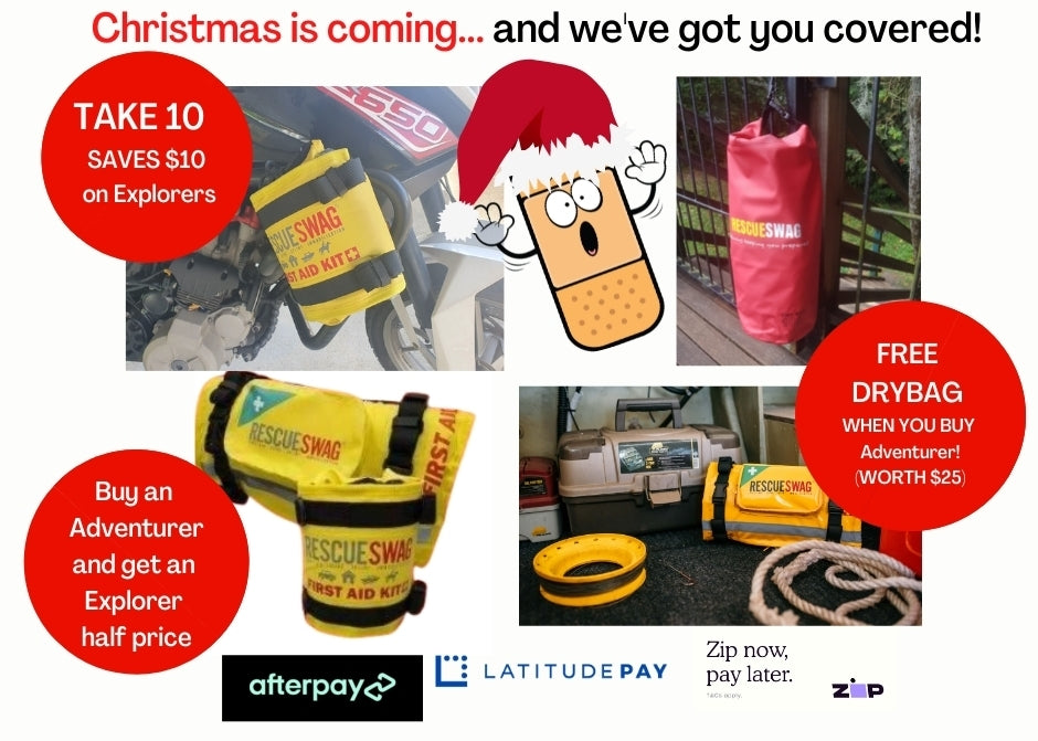 Christmas specials from Rescue Swag