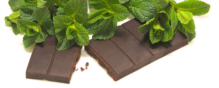 Raw Organic Chocolate- MINT HINT (Vegan)