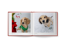 "Load image into Gallery viewer, Sausage Dogs of the World V3 ""Christmas Edition"""