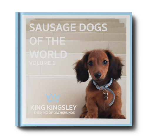 Sausage Dogs of the World V1 'Limited Copies Left'