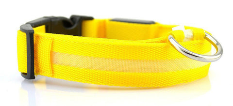Night Safety LED Dog Collar- Flashing Glow LED